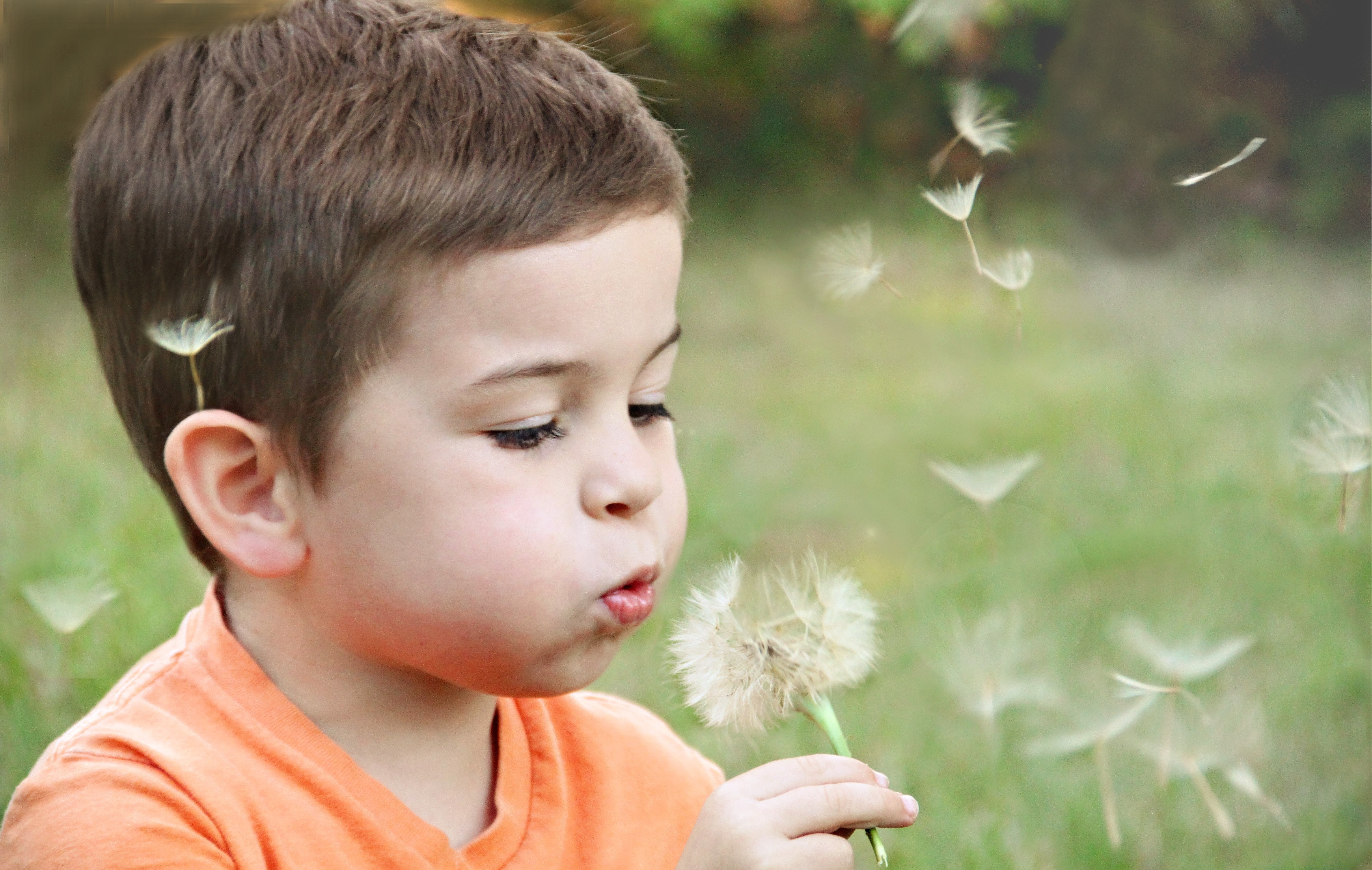 boy_blowing_dandelion